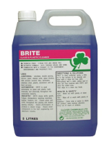 Brite-Window/Mirror/Plastic cleaner 5L